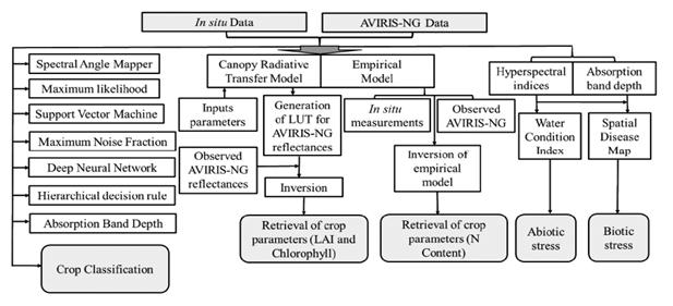 Блок-схема общей метолодогии.png